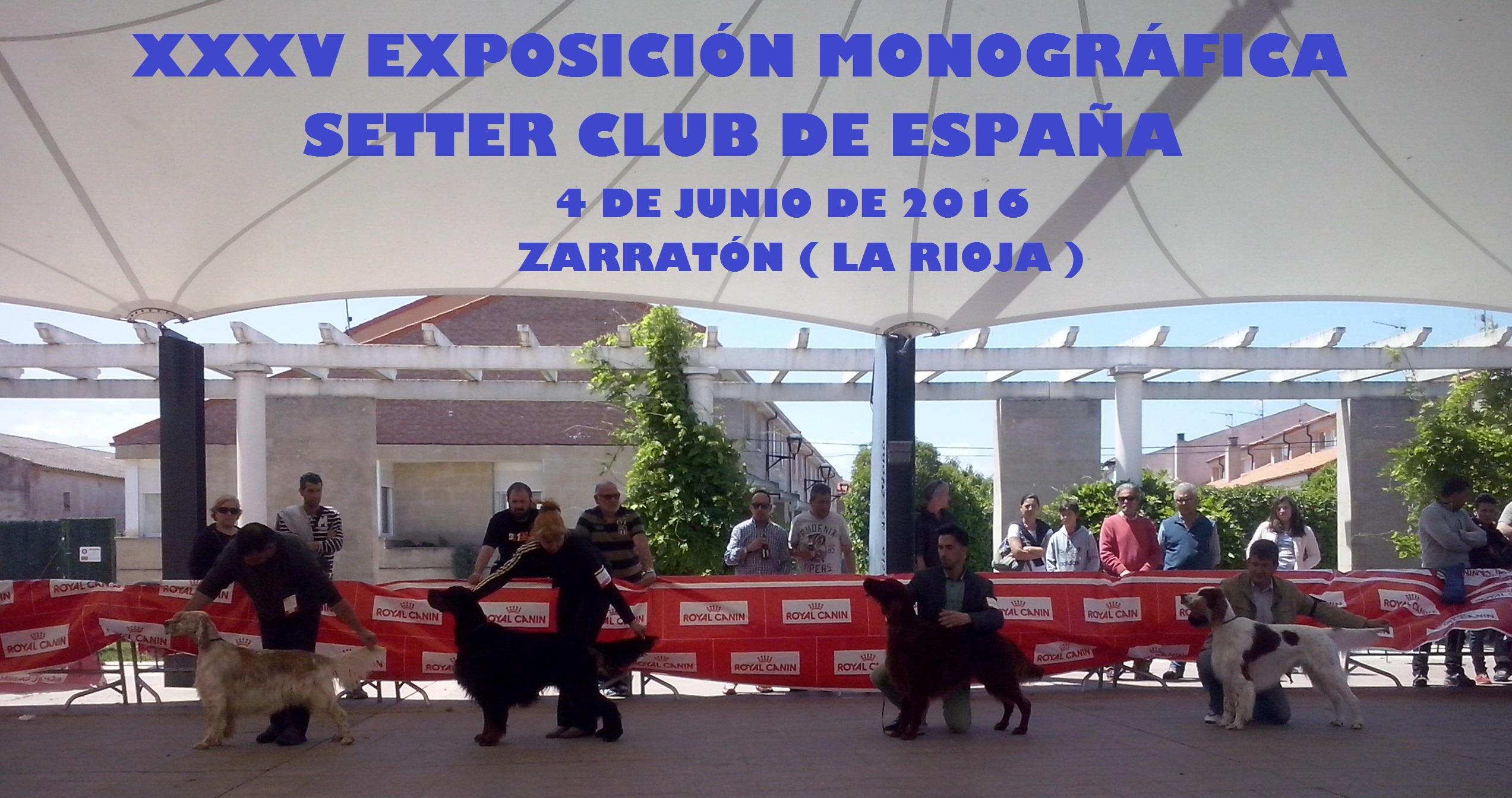 EXPOSICIÓN MONOGRÁFICA SETTER CLUB DE ESPAÑA