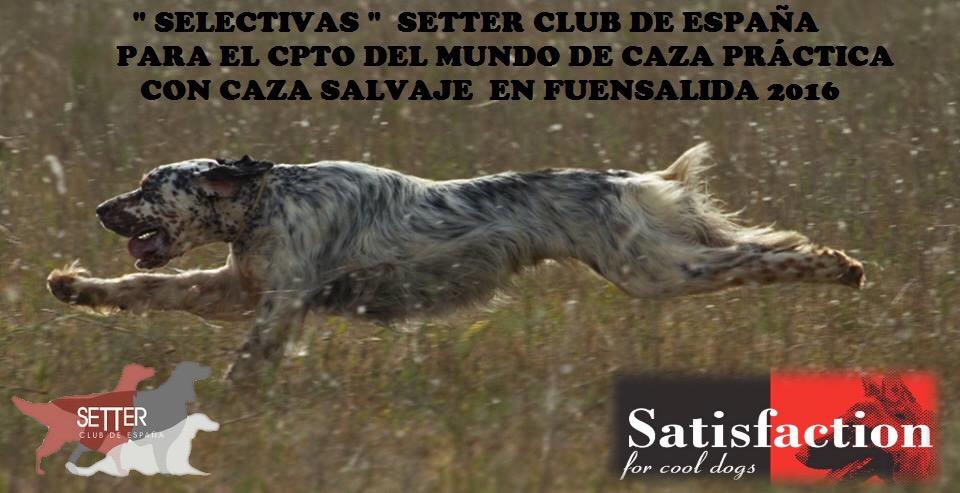 """Concurso de Caza Práctica """"SELECTIVAS"""". 29,30 de Septiembre, 1 y 2 de Octubre de 2016 Fuensalida (Toledo)"""