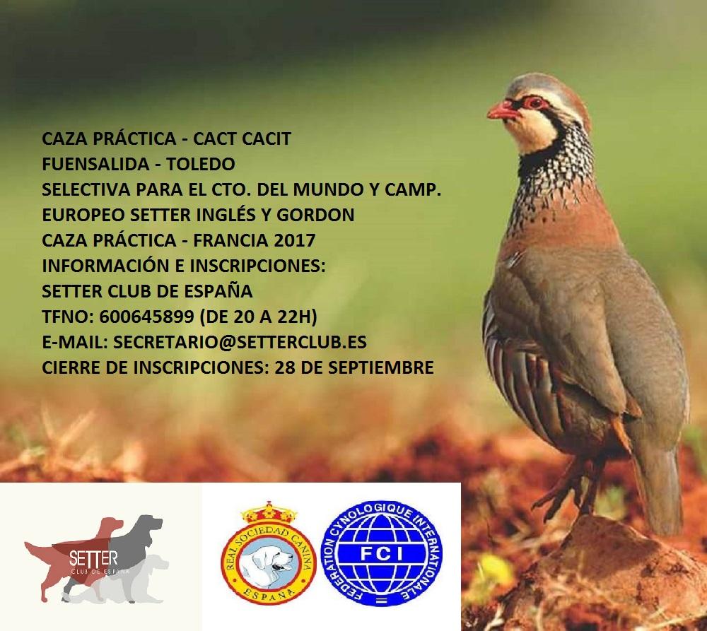 CP FUENSALIDA (TOLEDO)