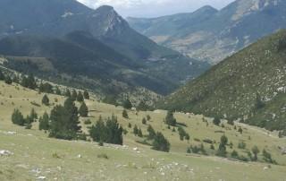 Alt Pallars