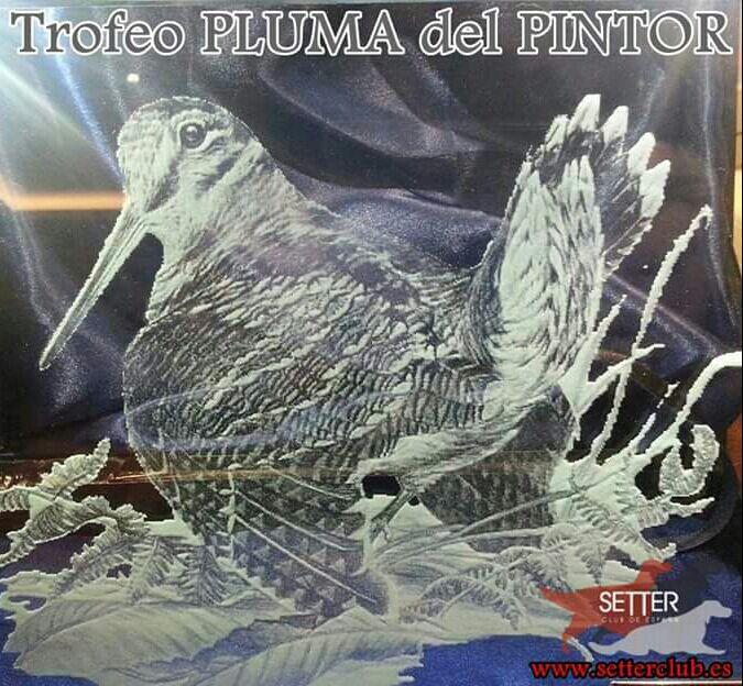 """TROFEOS PLUMA DEL PINTOR """"ORO"""" Y """"PLATA"""" 2017"""