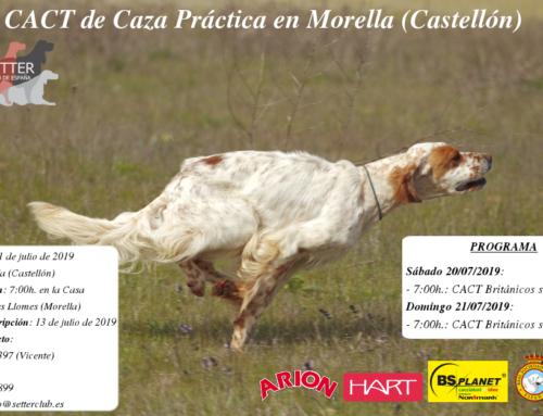CACT Caza Práctica Castellón 2019