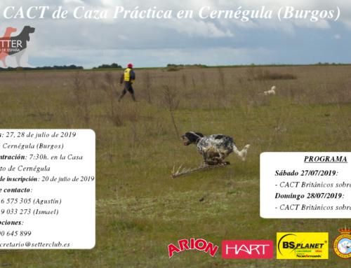 CACT Caza Práctica Cernégula (Burgos)