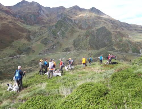 Fotos Concursos de CP en Montaña en Cataluña 2019