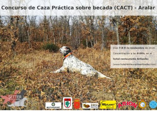 CACT sobre becada en Aralar, Navarra