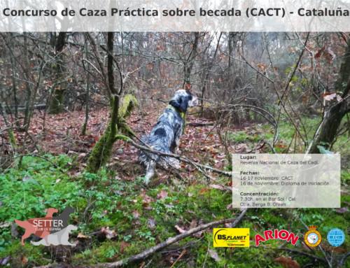 Caza Práctica sobre becada (CACT) – Cataluña 2019