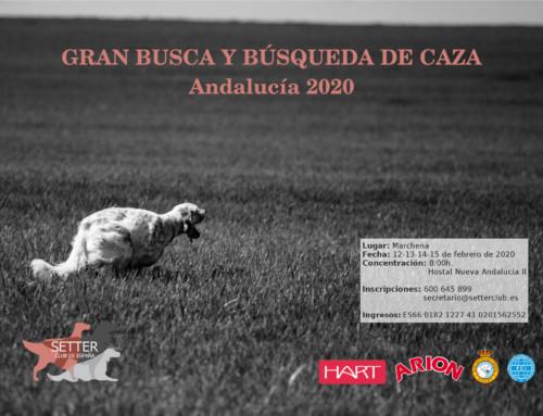 Semana de Andalucía 2020