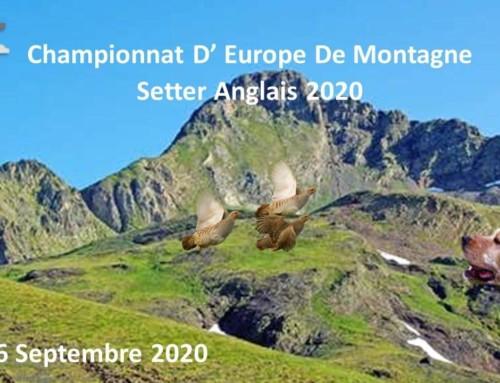 Campeonato Europeo Setter Inglés de Montaña 2020