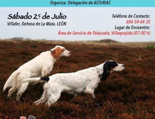 Jóvenes Promesas Asturias 2020 (a celebrar en León)